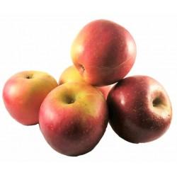 1 kilo de pommes du village de viladamat varieté fuji