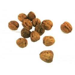 Nueces de Crespià 1kg