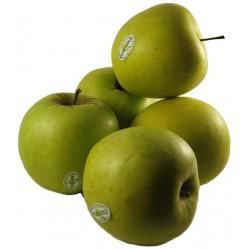 manzana golden del Alt Empordà 1kg. Buenísima.