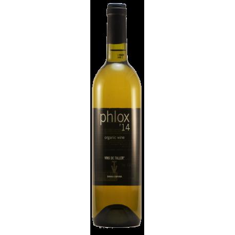phlox'14 blanc