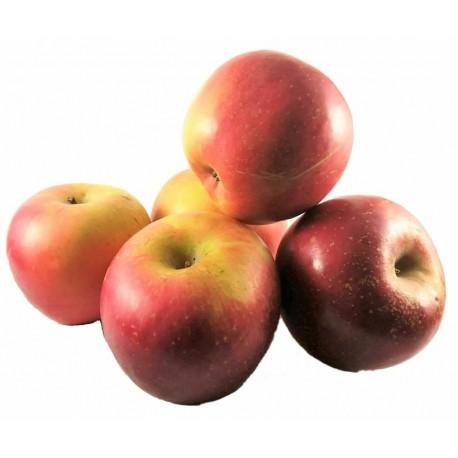1 kilo de pomes varietat fuji de viladamat