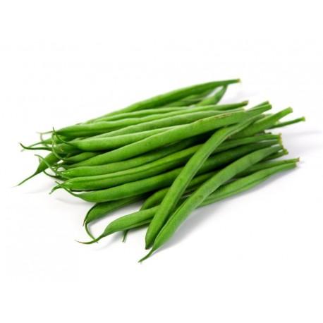 haricots verds des vergers de Alt Empordà. 1k.