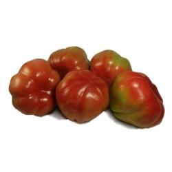 Medio kilo de tomates de la pera de Vila-sacra